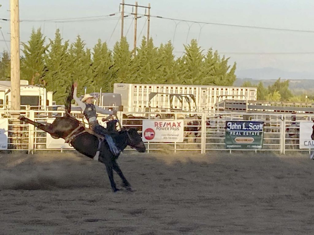 photo of rodeo horse and rider